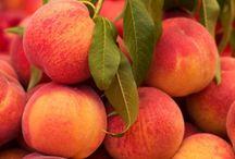 Georgia Peaches / by Zippyrose Alexander