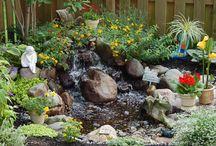 ponds/streams / by Jennifer Arnold