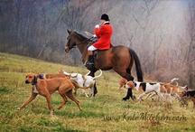 VA fox hunting