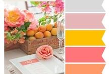 Pale Pink Board