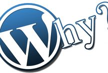 7 WordPress Tutorials for Beginners / WordPress website development is a very critical task that uses the versatile platform to create anything from a simple blog to an elaborate ecommerce website.