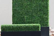 Fence line plantings