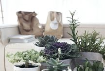 Home Decor / Home goods and decorations for an easy life. Beautiful and functional objects.