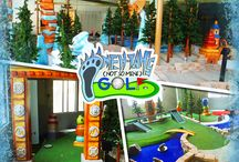 Arcadia Adventures / Our family entertainment center features an arcade, mini golf, ropes courses, and more!