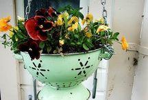 Flower Pot Ideas.  / by Jessica Lindsley Klobetanz