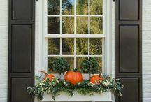 front porch/window