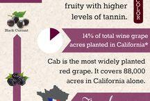 Características de tipos de vinos