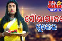 Saubhagyabati Gulei || Mr.Gulua || EP - 11 || Odia HD Video