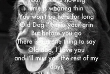 """Old Dogs are the Best Dogs / """"If there are no dogs in heaven, then when I die I want to go where they went."""" Will Rogers / by Pijon Smith"""