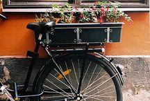 Bi cycles / by Tienda Verde