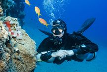 Diver Skills