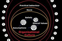 Organizational Strategy and Corporate Culture
