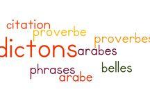 Culture arabe