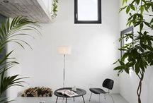 house, home design