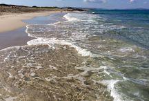 2015 - Formentera - Concerning the Landscape - Inspiring / Inspiring - Observation - Impressions