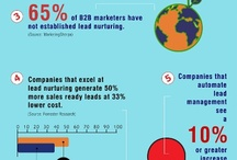 Leadsberry Infographics