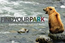 """#Find Your Park / Find Your Park and celebrate 100 years of the national parks service! John Hall's Alaska is a participant in the National Park Foundation's """"Find Your Park"""" campaign, which encourages every American to get out and explore the National Park System. John Hall's Alaska supports this campaign by bringing guests to 6 of Alaska's National Parks. Check out our National Parks Tour featuring 5 National Parks on one itinerary!"""