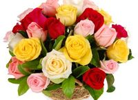 Ujjain Flowers Online