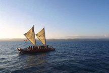 Hawke's Bay Māori Tours