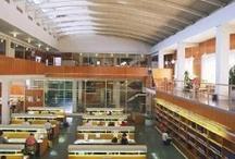 Bibliotecas de Zaragoza y Aragón