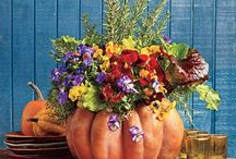 HARVEST DECORATIONS / by Shirley Morgan
