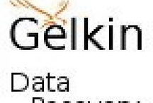 "Gelkin.net / Distress, Frustration, Anger, Sadness and many many more emotions. Losing your own data is a gut wrenching experience. Hopefully our free guide might help answer a few of your immediate concerns. Email support AT gelkin dot net with the subject line ""Save Money, Time, and Frustration"" for immediate download instructions.