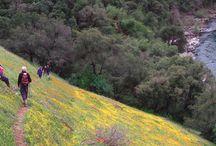 Sacramento hiking ideas