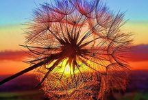 Fotos espectaculares