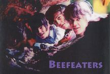 Beefeaters projekt
