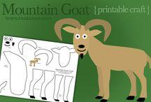 MFW K: Goat