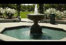 Beautiful Spaces / Beautiful spots in Playa Vista