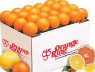 Indian River Florida Oranges / Florida Oranges from Orange Ring - Fresh and delicious Navel Oranges, Valencia Juice Oranges,Temple Oranges, Cara Cara Oranges, and Sweet Lee Oranges. Fresh picked Florida Oranges Packed and Shipped Daily. Fresh Florida Oranges gift baskets make the perfect gift for the holidays or any special occassion.