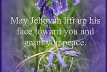 Beautiful Scriptures