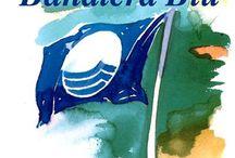 Bandiere Blu 2014 / Bandiere Blu 2014 in Molise - premiazione miglior mare e qualità servizio balneare...