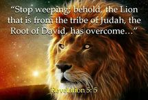 Lion of Judah... He is alive in me!!