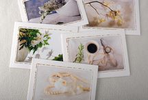 Etsy Store / My fine art photography and greeting card shop on Etsy.