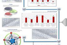 Infographies / Infographies sur la gouvernance de l'information, GouvInfo IAI, l'observatoire GouvInfo