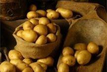 Patate Olandesi / La patata Olandese ha in sé alcune caratteristiche che la rendono unica: pasta compatta, sapore deciso e soprattutto adatta ad essere preparata con il metodo della frittura.