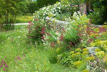 Tuin natuurlijk design
