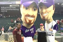 DBacks Fan Fest and Baseball 2016 / Baseball and Dbacks!