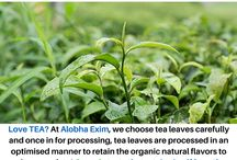 Organic Tea / We process the best Organic Tea, processed with the highest standards to bring you the finest there is. Tea, that fills your soul and quenches the palate. As the world second most consumed drink, Tea is the hot favorite of billions! Experience the taste that retains itself from the farms to the mouth