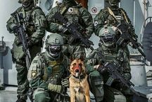 Tacticool Forces