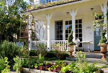 Potager: Vegt + Herbs + Flowers / Mix of herbs, vegetables, flowers, boxwood ! / by Tara Dillard