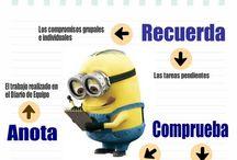 Responsabilidades grupo / Funciones