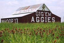 All Things Aggie! / by Alisa Swink