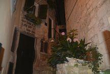 Croatia - Rovinj / turist