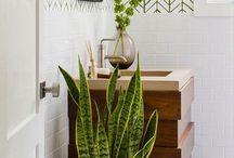 plantas e decorações