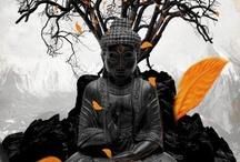 Buddah / by Rachel Mole