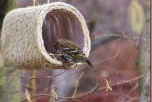Birdfeeders, Etc. / by Lynn Medlin