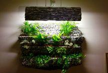 Eden's gardens / Aqua and hydroponic garden